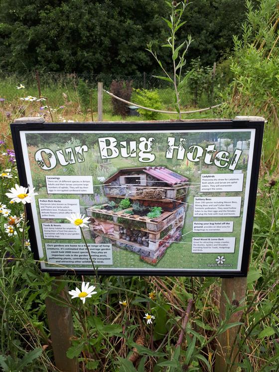 Bug Hotels