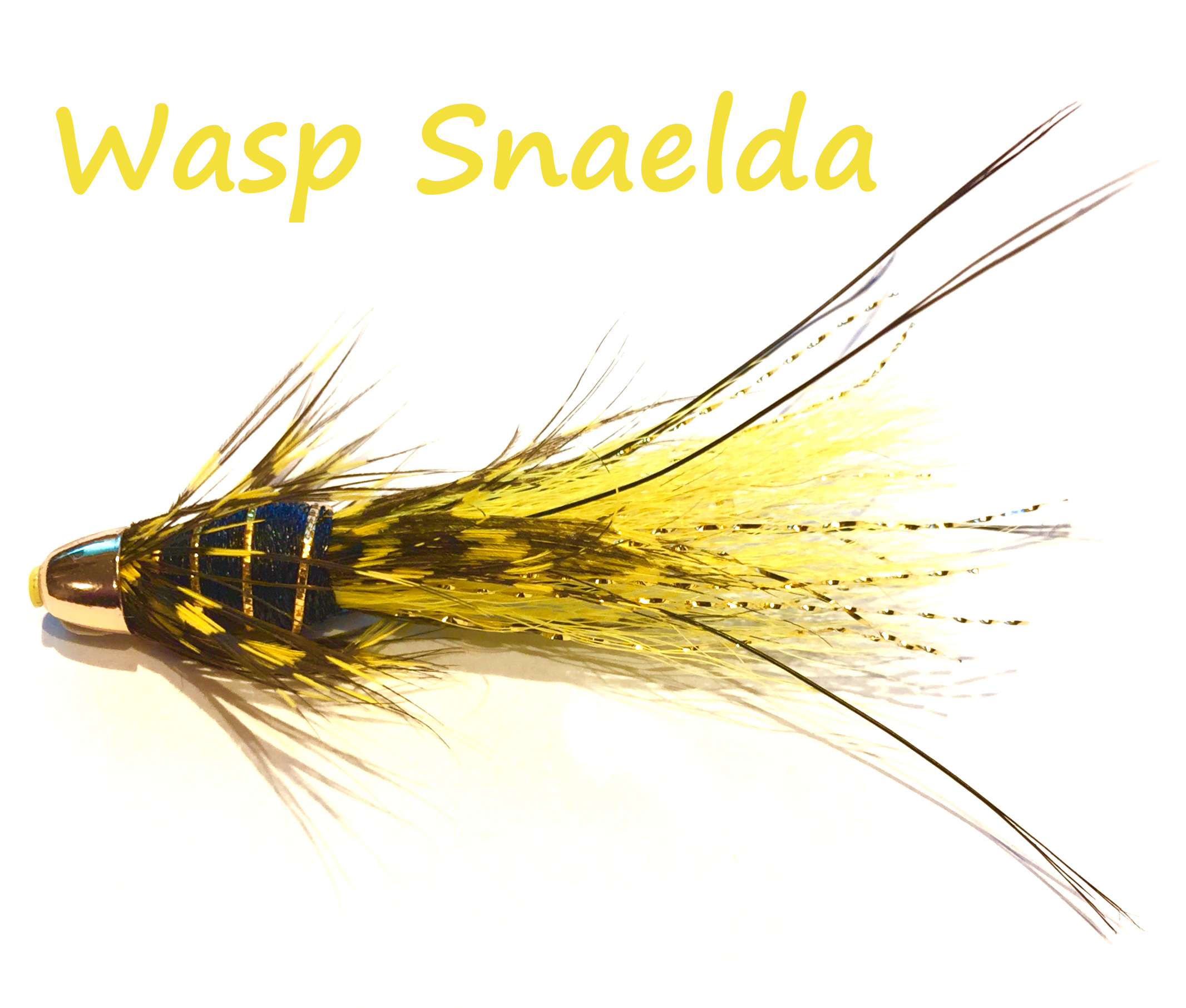 Wasp Snaelda FDG.jpg