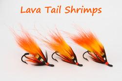 Lava Tail Shrimps Trio copy.jpg