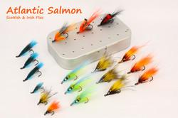 Atlantic Salmon Scottish Irish FDG copy.
