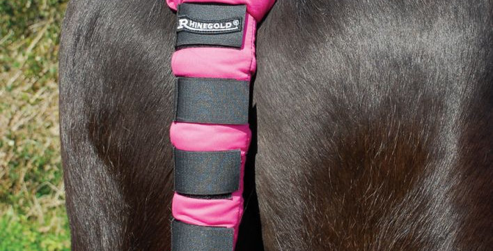 Rhinegold Cotton Quilted Tailguard
