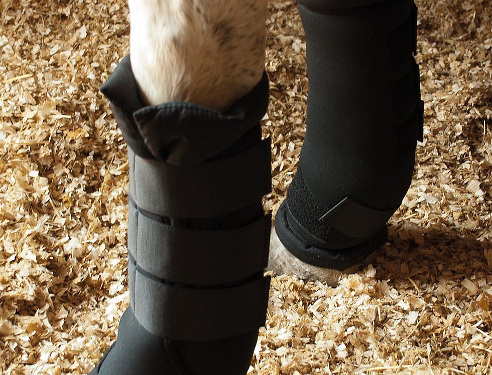 Rhinegold Stable Medicine Boots