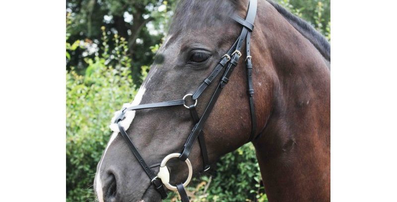 Sheldon Classic Mexican Grackle Bridle with rubber reins