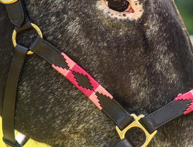 Sheldon Leather Polo Headcollars