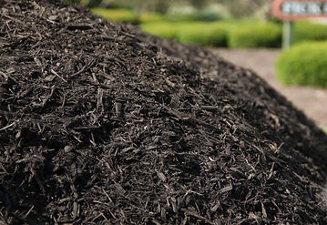 """Our Dyed """"EBONY BLACK"""" Mulch is a blend of recycled sawmill and logging material that is double ground, then color enhanced. A great choice for someone who likes double ground mulch, but wants the mulch and color to last longer. The coal black color will last up to a year, and it will last longer than mulch made from bark."""
