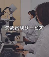 委託試験サービス.jpg