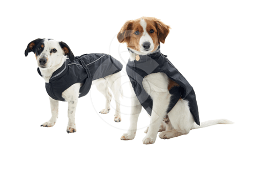 Manteau pour chien taille XS