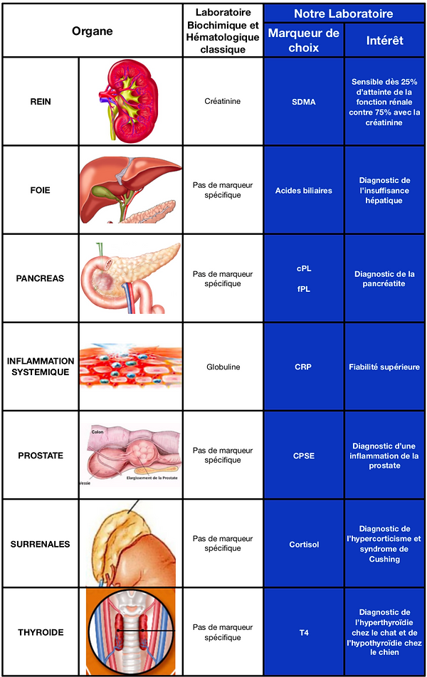 paramètres_spécifiques_selon_les_organes