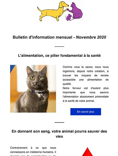 Bulletin mensuel d'information.png