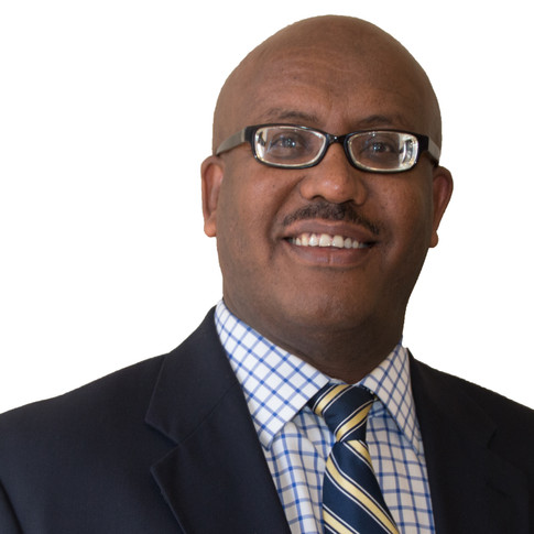 Mulualem Tilahun, DVM, PhD Board Chairman