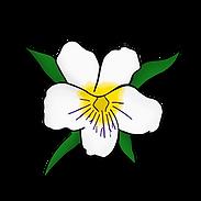 ZTA_flower.png
