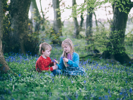Bluebell Woods Family Photography | Halifax | West Yorkshire