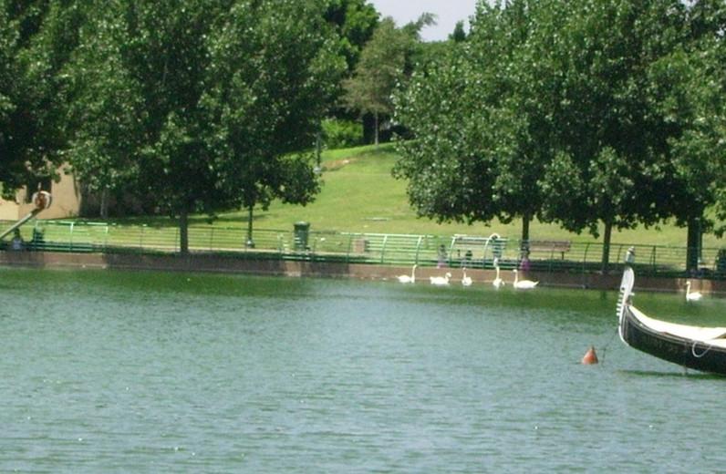 אגם פארק רעננה