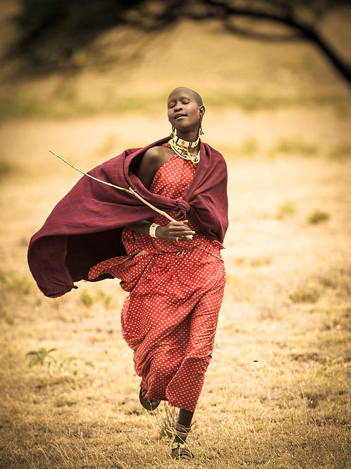Maasai Dream