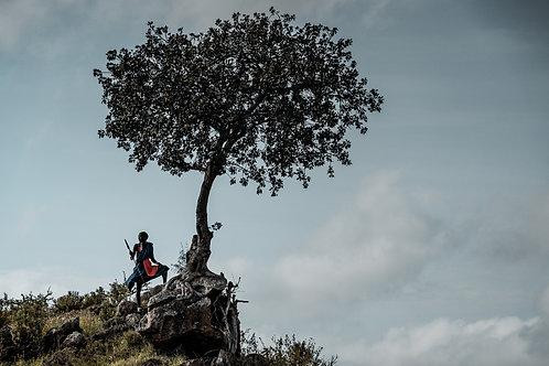 Maasai warrior I