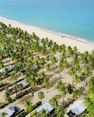 Karpaha Sands - Sri Lanka.png
