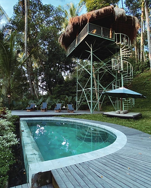 Lift Treehouse - Ubud Bali.png