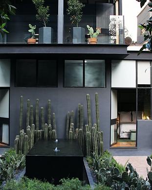 Ignacia Guest House - Mexico City - Mexi