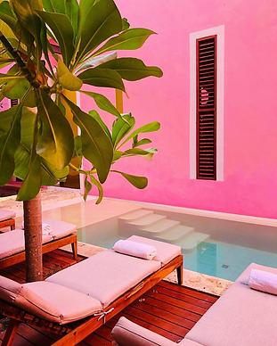 Rosas & Xocolate - Merida Yucatan.png