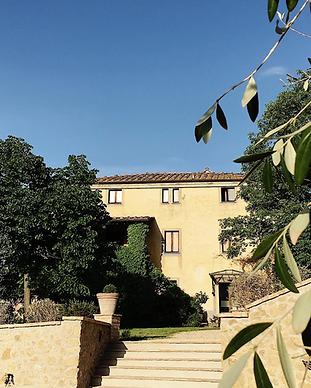 Fattoria San Martino - Montepulciano.png