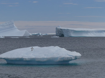 Journeys to Antarctica