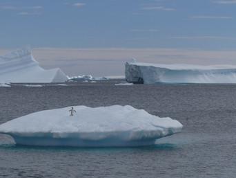 Journeys to Antarctica