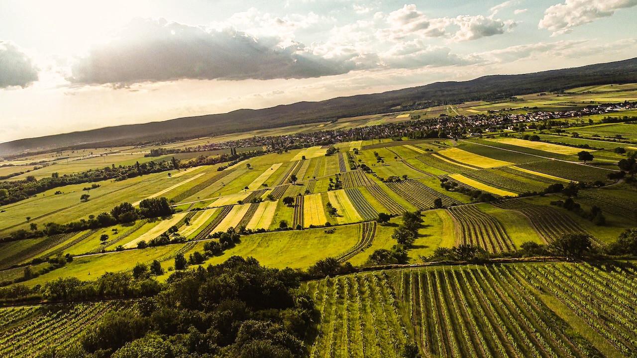Schützen am Gebirge from Goldberg