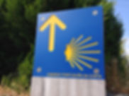 CAMINO SANTIAGO DAY TOUR
