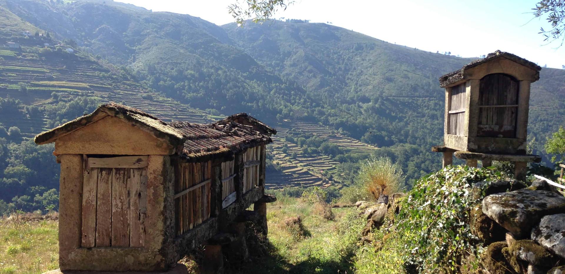sistelo rural
