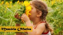 Saiba o que é memória olfativa e qual a sua importância
