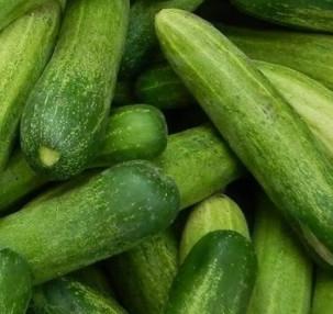 Timun / Cucumber