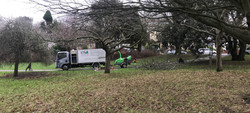 Crownlifting Romilly park