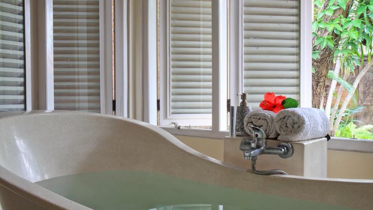Lionfeet Bathtub