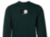 Green Sweater Close.png