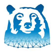 Bear%20Systems%20Logo_edited.png