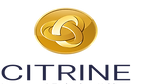 CITRINE INVESTMENT LOGO.png