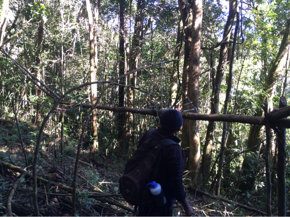 Georges with lemur snare traps