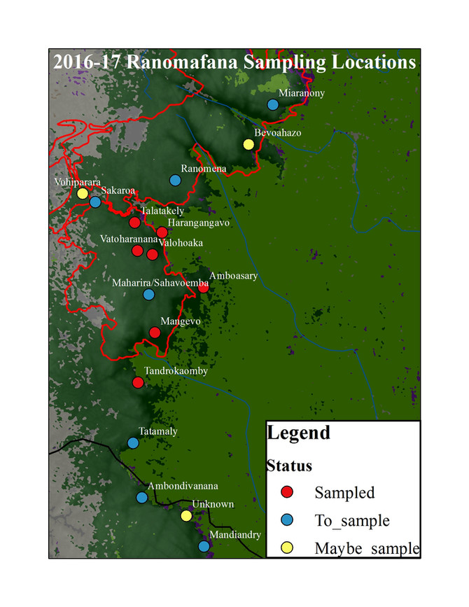 Ruffed lemur landscape genetics