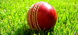 Fund-raising events planned for 2013