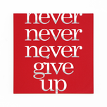 01 never give up.png