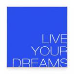 LIVE YOUR DREAMS blu.jpg