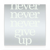 never give up SW
