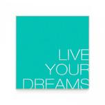 09 live your dreams.jpg