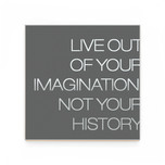 21 live out of your imagination.jpg