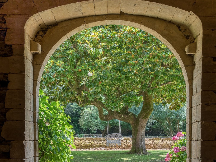 Vue sur le magnolia depuis la Grange