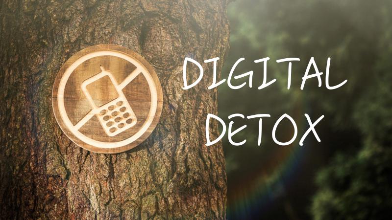 Digital detox au vert - nature