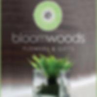 bloomwoods.jpg