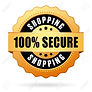43673993-secure-shopping-icon.jpg