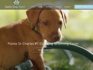 Salon Dog Wash