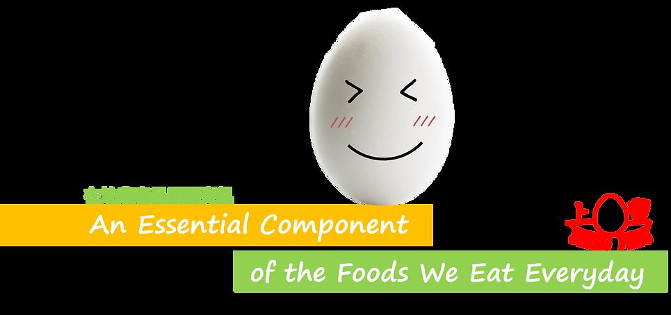 上豐蛋品| 白殼蛋 | 在地農產履歷資